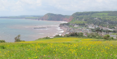 Photo: Sidmouth walks