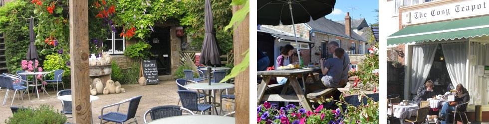 Photos: Devon restaurants, cafes & pubs