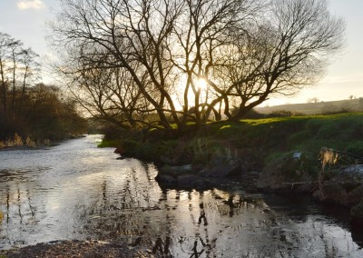 A midwinter walk by the River Otter