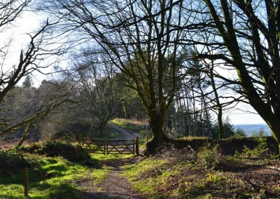 Footpaths across Mutters Moor, Sidmouth