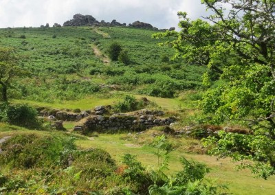 Remains of a medieval village near Hound Tor, Dartmoor