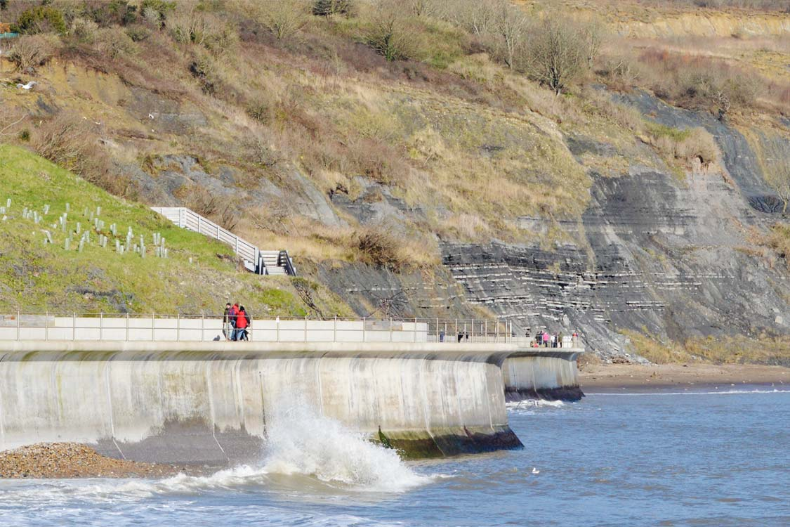 Photo: Pre-historic cliffs beyond Lyme Regis modern sea wall