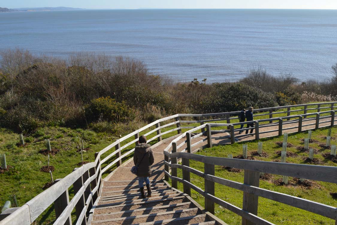 Photo: The path down to the sea wall at Lyme Regis
