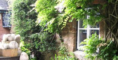 Photo: Otterton village and mill