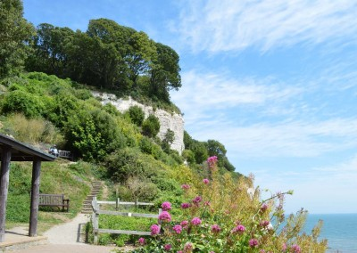 The cliff side gardens at Beer