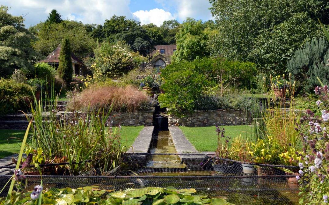 A hidden gem in the Axe Valley – Burrow Farm Gardens