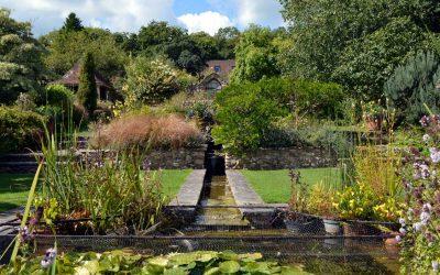 A hidden gem in the Axe Valley – Burrow Farm Gardens