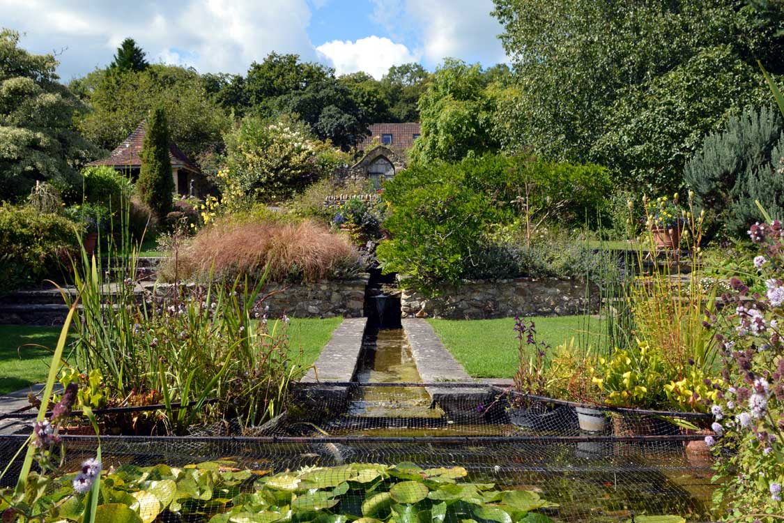 Photo: the Millenium garden at Burrow Farm