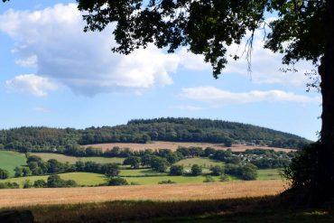 Photo: Looking across the ha-ha to Devon hills from Burrow Farm Gardens