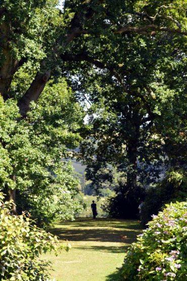 Photo: Exploring Burrow Farm Gardens