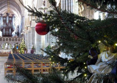 Photo: Exeter cathedral at Christmas time