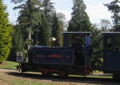 Photo: Steam engine on the Bicton woodland railway