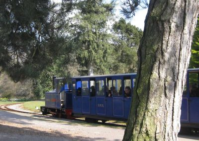 Photo: The Bicton woodland railway