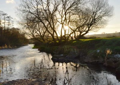 Photo: The river Otter in Winter sunshine
