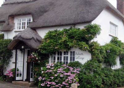 Photo: Traditional Devon thatch in Otterton village